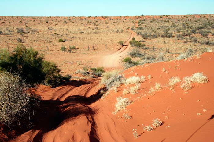 photo of Simpson Desert
